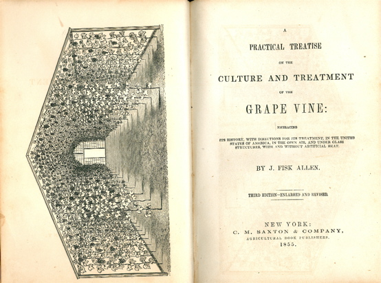 A Practical Treatise on the Culture and Treatment of the Grape Vine: Embracing its History. with Directions for its treatment, in the United States of America, in the open air, and under glass structures, with and without artificial heat. Third Edition - Revised and Enlarged.