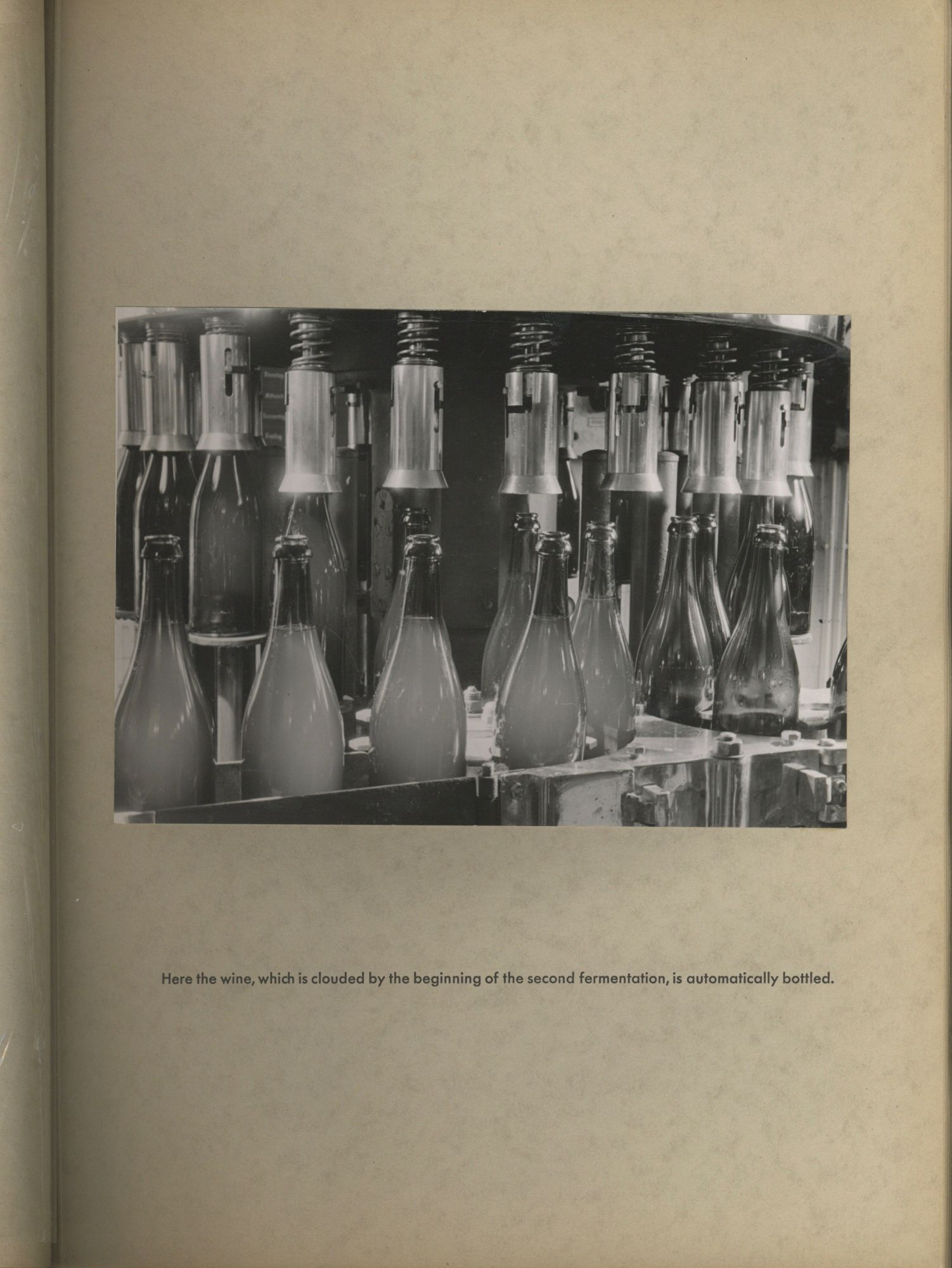 [Untitled Photograph Album Documenting Production Facilities of Henkell Trocken]. Photo Album - Sparkling Wine, Henkell & Co.